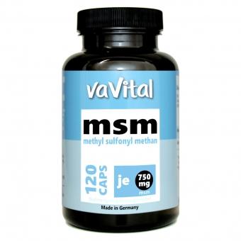 MSM - 750mg je Kapsel | 120 Kapseln | 100% Vegan |